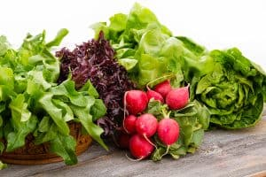 Caregiver Gaithersburg, MD: Tips for a Healthy Lifestyle